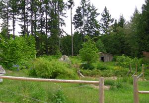 Qu 39 est ce que la permaculture le jardin comestible - Qu est ce que la permaculture ...