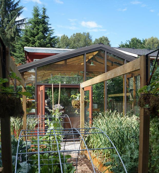 Visite d 39 une serre aquaponique urbaine le jardin comestible for Installer une serre de jardin