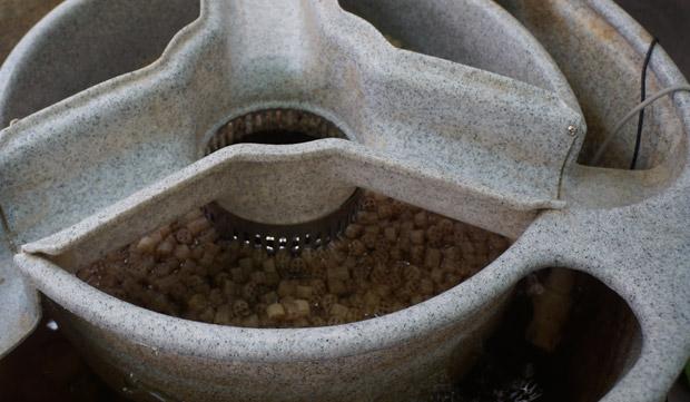 Bio-filtre pour le cycle de l'azote