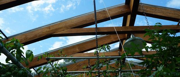 La structure de la serre est en bois
