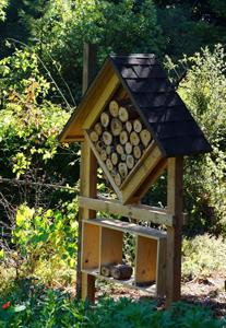 Une cabane à insectes