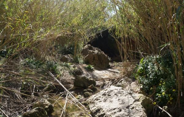 permaculture-malte