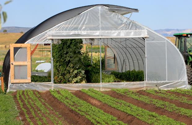 Cette serre mobile est utilisée chez Milkood permaculture en Australie