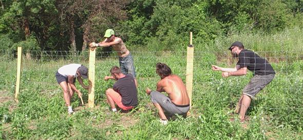 Deuxième jour de chantier pour la clôture